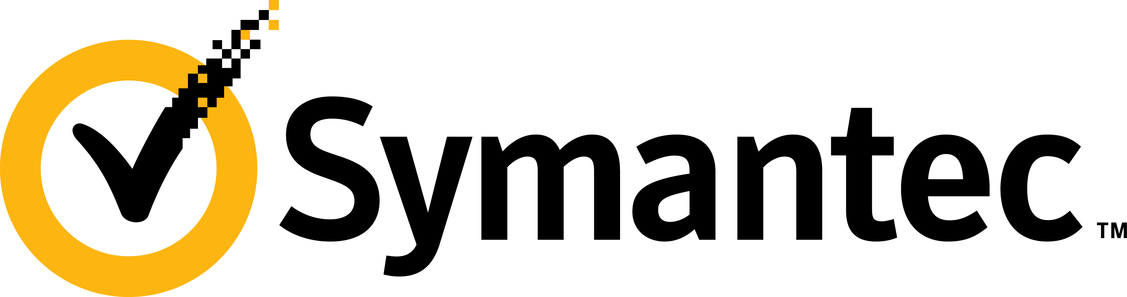 Symantec_logo_horizontal_2010