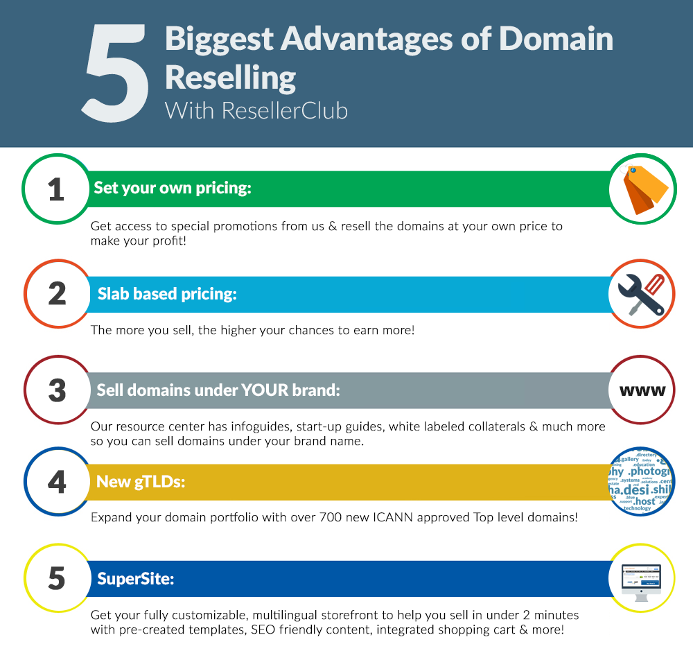 infographic-Domain Reselling