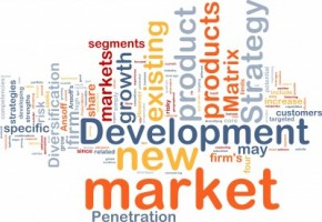 new market development word cloud