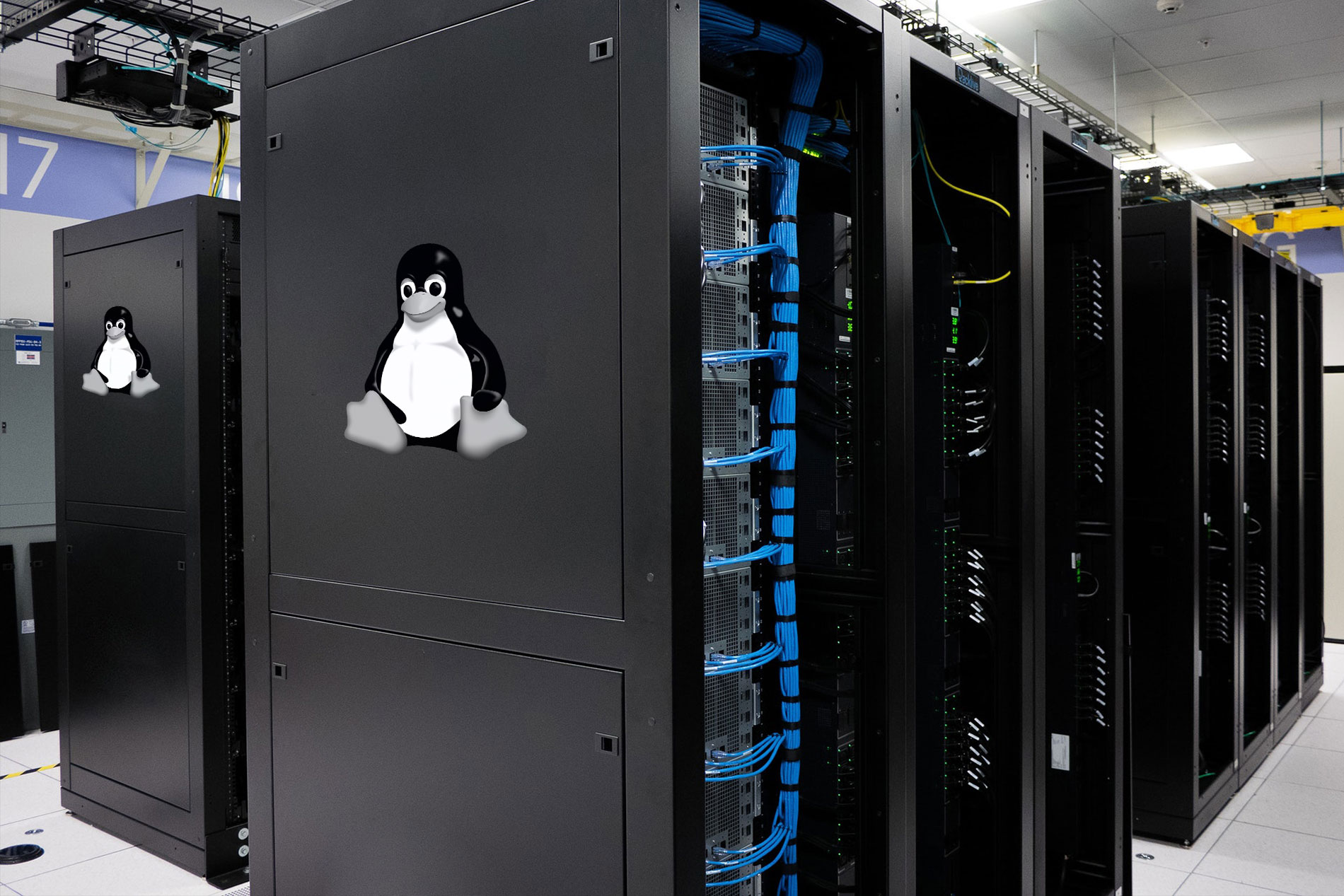 All You Need to Know About Linux Reseller Hosting